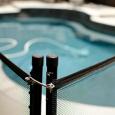 Pool Fence enclosing swimming pool