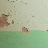 Chipping paint crumbling off a wall.