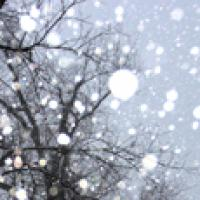 Winter snowflakes mean it is time for winter safety percautions