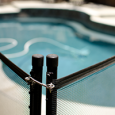 Pool Fence enclosing swimming pool