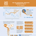 Medication Safety Infographic (2012)
